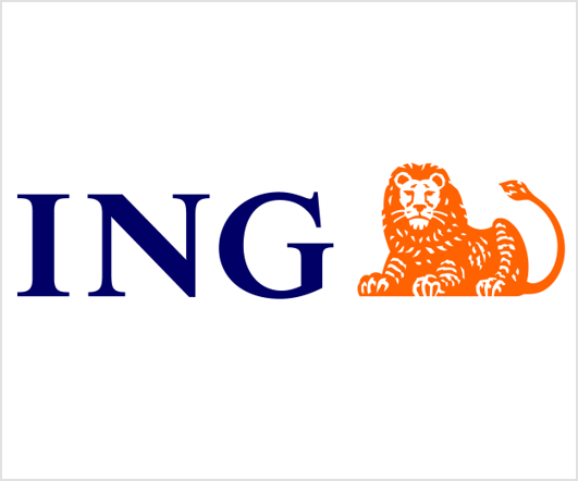 ING Accounts Payable